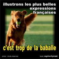 illustrons les plus belles expressions françaises (4)