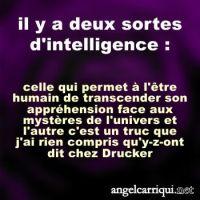 ...il y a deux sortes d'intelligence...