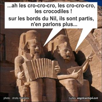 036-crocos
