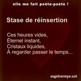 stase de reinsertion